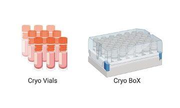 Cryopreservation - Research Tweet