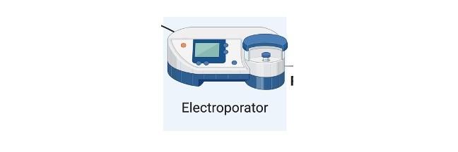 Electroporation - research tweet