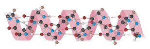 Protein Structure - Research Tweet 1