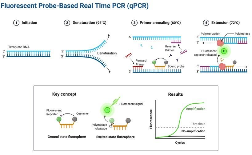 qPCR - research tweet 1