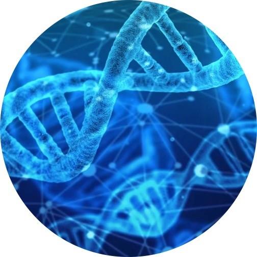 BioTechnology, Molecular Biology - Research Tweet