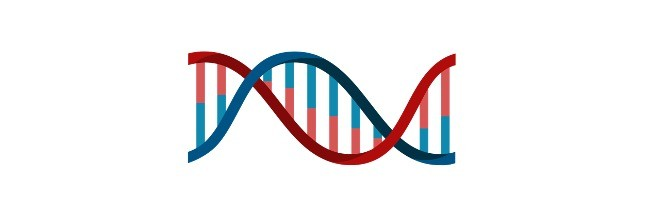 DNA Definition, Discovery, Function, and Bases - research tweet 2