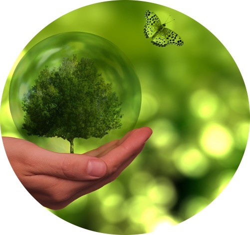 Ecology - Research Tweet