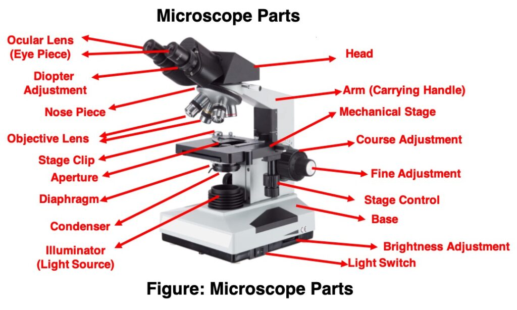 Microscope Parts - Research Tweet