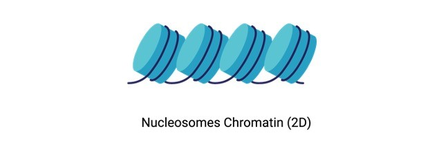 Nucleosome - research tweet 2