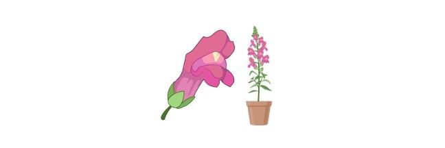 Plant Growth Hormone - Ethylene - research tweet