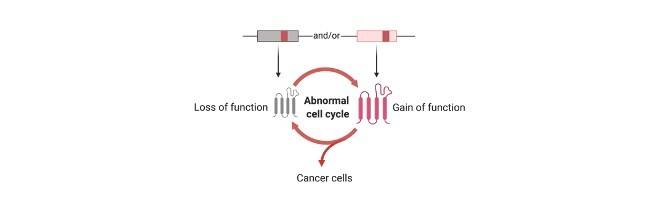 Proto-Oncogene - research tweet