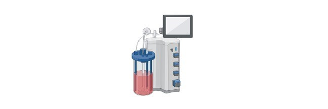 Carbohydrate Fermentation Test, Carbohydrate Fermentation Test Principle, Carbohydrate Fermentation Test Procedure, Carbohydrate Fermentation Test Uses, Carbohydrate Fermentation Test Result