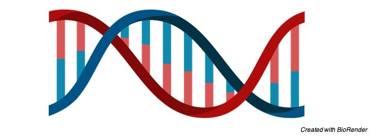 DNA Definition, Discovery, Function, and Bases - research tweet 3