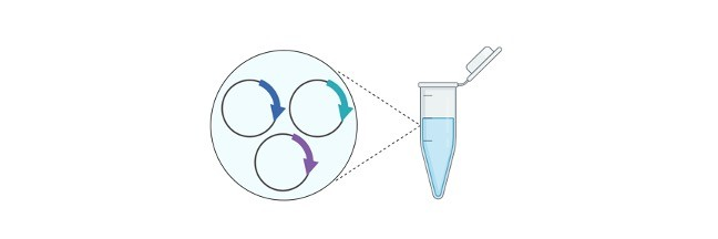 DNA Technology- Definition, Types, and Facts I ResearchTweet