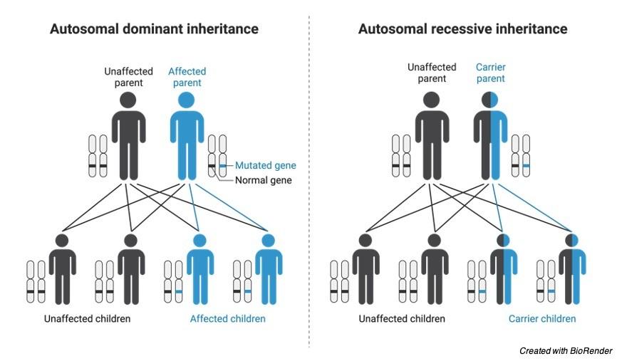 Genetic Disorder - research tweet 2