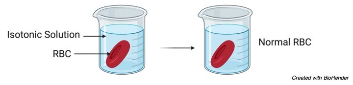 Isotonic Solution - research tweet 1