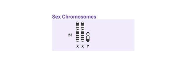 Klinefelter Syndrome - research tweet