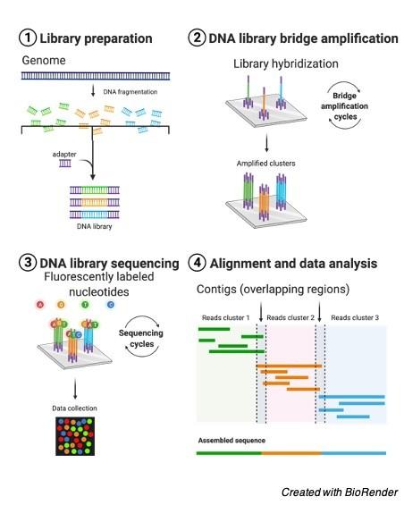 Next Generation DNA Sequencing - research tweet 2