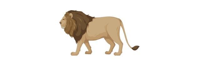 Predation, Predation definition, Predator, Predator definition, what is Predator,
