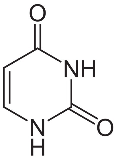 Uracil Structure, Definition, and Functions - research tweet