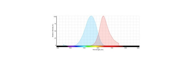 Absorption Spectra, Absorption Spectra Definition, Absorption Spectra Examples,