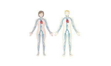 Biological System, Biological System Definition,