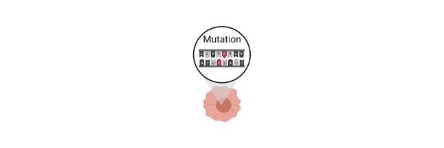 Mutagen, Mutagen Definition, Mutagen Example, What is a Mutagen,
