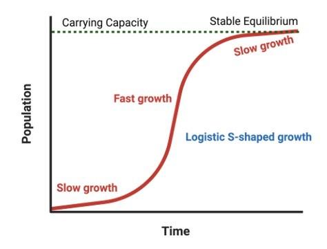 Carrying Capacity, a Carrying Capacity Definition, What is Carrying Capacity, Carrying Capacity Examples, Carrying Capacity Biology,