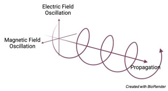 Electromagnetic Waves, 1 Electromagnetic Waves Definition, Electromagnetic Waves Examples, What is Electromagnetic Waves,