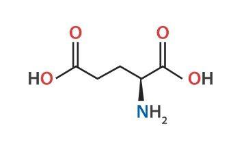 Glutamic Acid, What is Glutamic Acid,